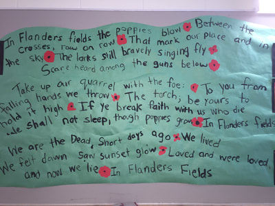 Remembrance Day Poem & Poppies